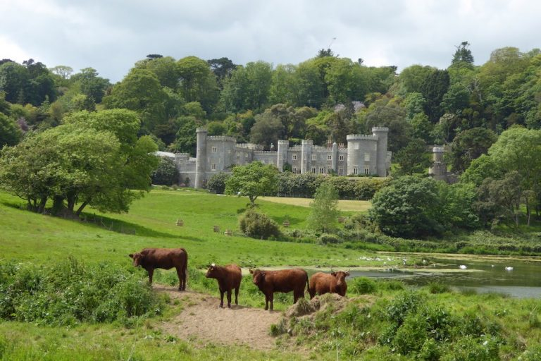 Caerhays castle in Cornwall