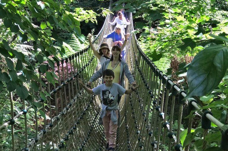 Ropebridge Lost gardens of Heligan